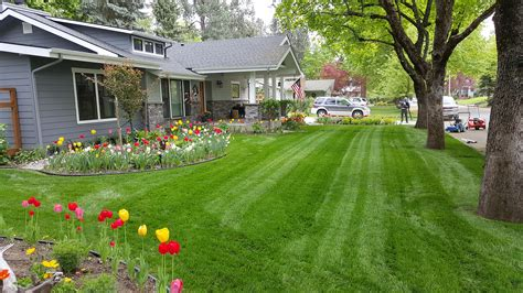 home hayden lawn maintenance sprinkler repairs and lawn