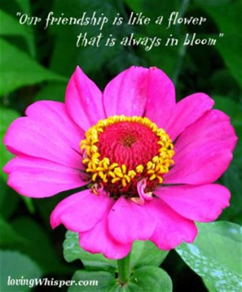 flower wallpaper with friendship quotes flower quotes about friendship quotesgram