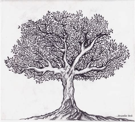 black and white tree images adventures in journaling black and white tree sketch
