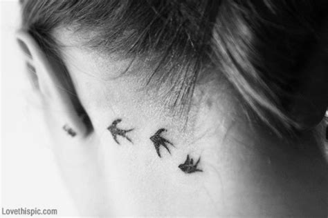 tattoo behind ear bird bird tattoo behind the ear pictures photos and images