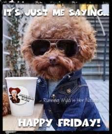 Funny Friday Memes Tumblr - its just me saying happy friday pictures photos and