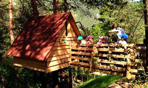 casa su albero a una raccolta fondi per la prima casa sull albero