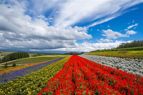 hokkaido lonely planet hokkaido tops lonely planet s first quot best in asia quot list