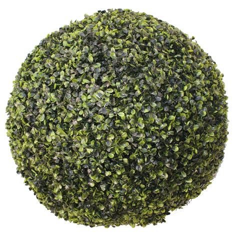 Plante Decorative Extérieure boule decorative jardin idee en jardiniere decoration