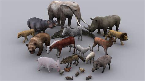 Animum 3d Models animals pack ready animated models 3d model