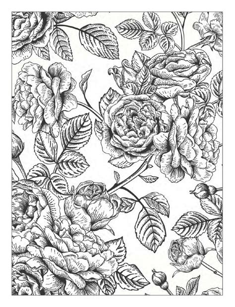 floral inspirations a detailed floral coloring book books 17 best ideas about coloring books on