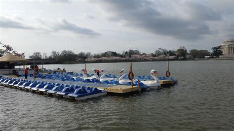 swan boats washington dc dalepu 233 tessa and jay s adventure blog