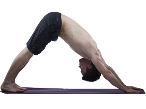 downward position exercises to help increase flexibility of diy health do it yourself health