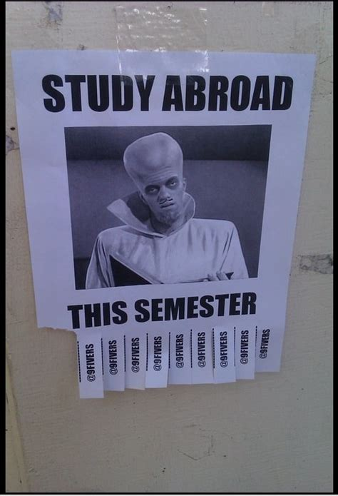 Studying Abroad Meme - 20 best travel memes images on pinterest funny stuff funny pics and ha ha