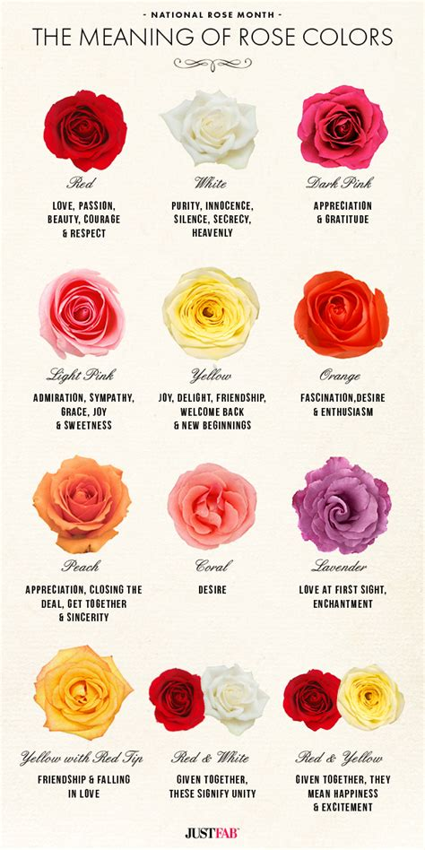 different color rose tattoos national month the meaning of colors