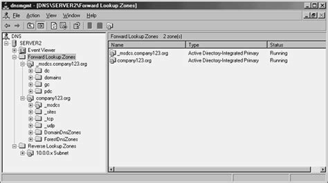 Forward Lookup And Lookup Designing Active Directory For Exchange Server 2003 Microsoft Exchange Server 2003