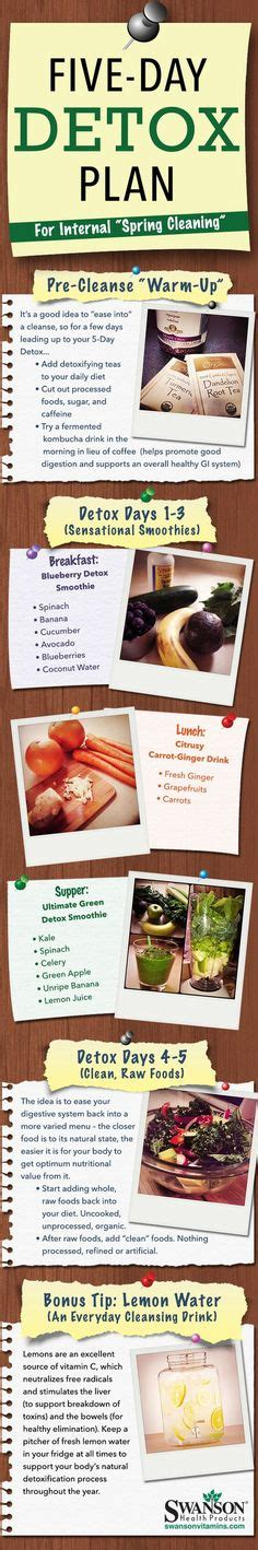 5 Day Detox Diet Recipes by 1000 Ideas About Smoothie Cleanse On Green