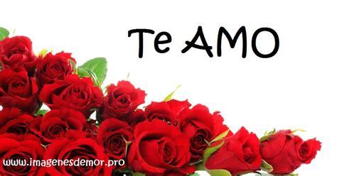 imagenes de rosas rojas te amo 14 imagenes de hermosas rosas con frase te amo