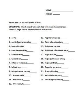 icivics cabinet building worksheet answers anatomy of the matching worksheet by the