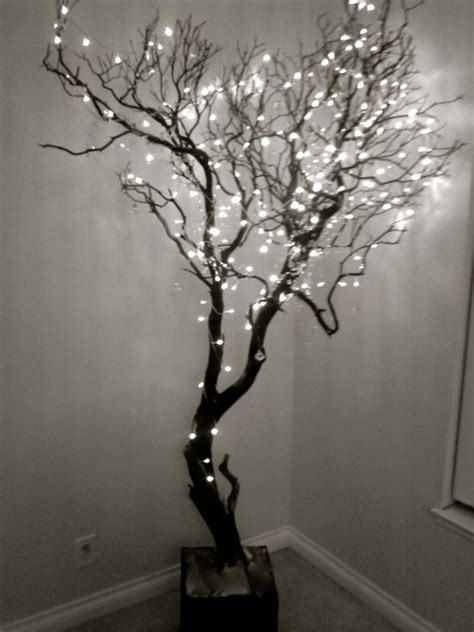 the 25 best lighted trees ideas on pinterest outdoor