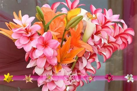 Hawaiian Wedding Flower Picture by Pink Plumeria I Do