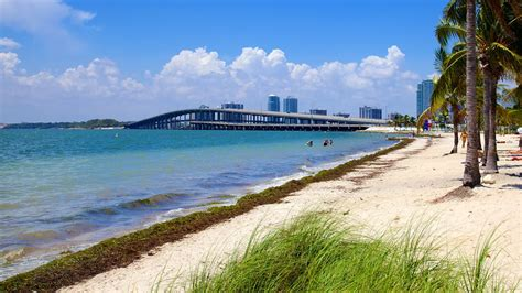 key biscayne key biscayne vacations 2017 package save up to 603 expedia