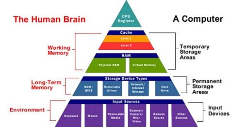 brain techniques for memory improvement and critical thinking books pin by caren cupp on classroom of the future