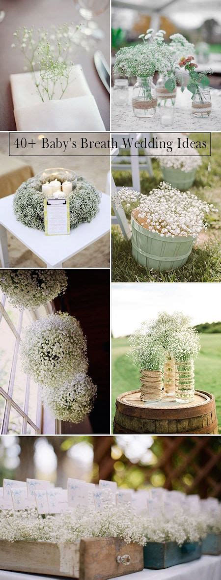 Wedding Picture Ideas by 23 Baby S Breath Wedding Decor Ideas And