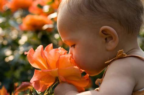 bambini fiori a carpi un week end in fiore modena bimbi
