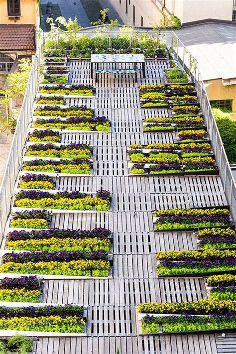 design guidelines green roofs amazing rooftop shows the magic of wooden pallets wooden
