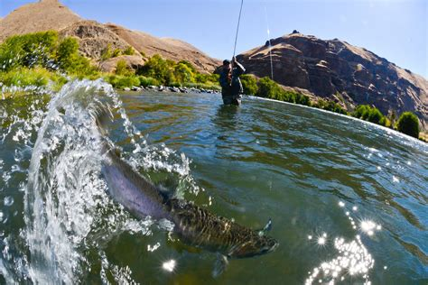drift boat deschutes river deschutes river steelhead fishing trip little creek