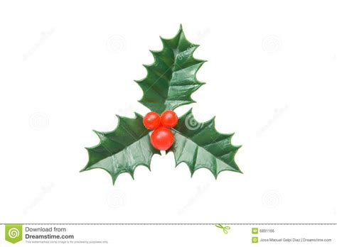 wann feiern russen weihnachten die typische verzierung der stechpalme weihnachten