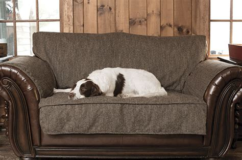 orvis dog couch washable dog couch cover herringbone grip tight