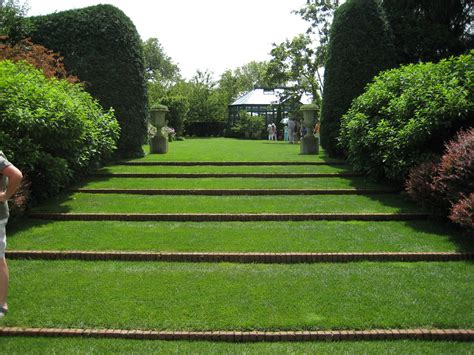 lawn garden lawn steps residential landscapes lawn and