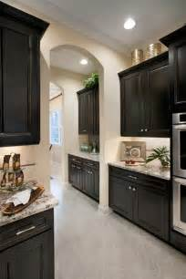 Kitchen Floor Ideas With Dark Cabinets 1000 Ideas About Dark Granite On Pinterest Dark Granite