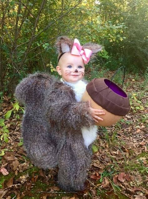 squirrel costume 40 of the best costumes for babies kitchen with