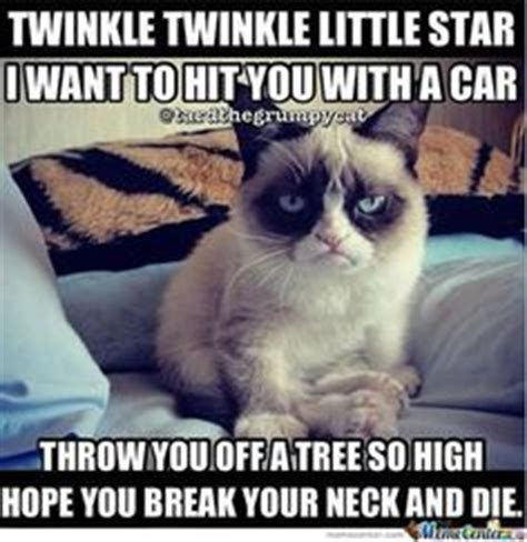 Best Angry Cat Meme - funniest cat memes ever image memes at relatably com