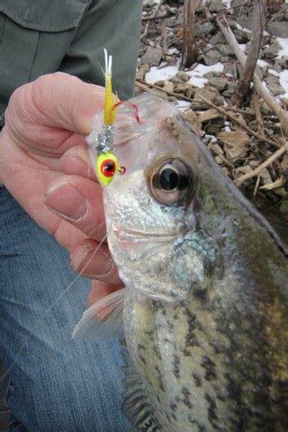 wintertime crappie fishing  brad wiegmann brad