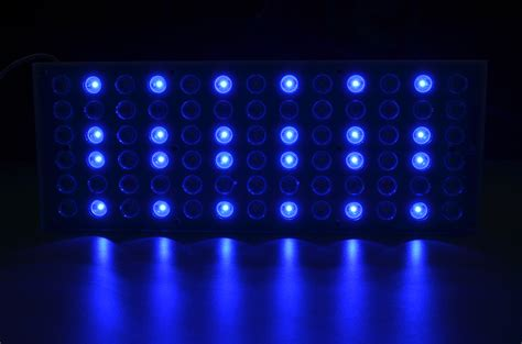 Aquarium Led Lighting Orphek Aquarium Led Lighting Blue Led Lights