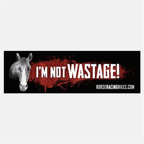 Racing Sticker Pack by I M Not Wastage Sticker Pack Horse Racing Kills