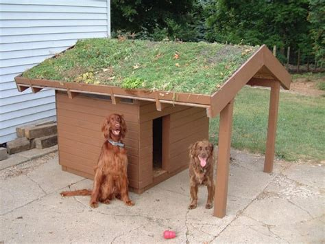 home made dog houses how to build a dog house sort through the confusion