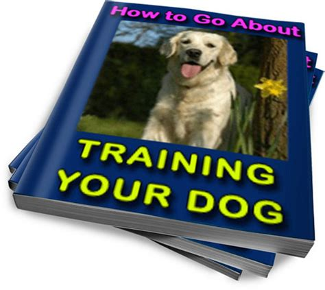 how to train dog to go to bathroom outside how to train your dog to go to the bathroom 28 images