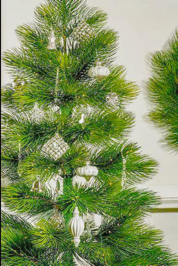 majestic pine christmas tree majestic pine tree the splendor of nature