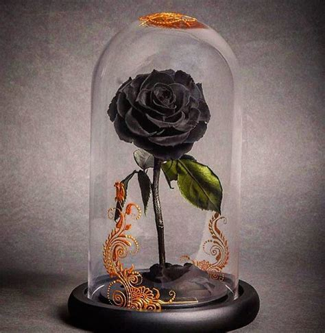forever rose in glass beautiful beauty and the beast style forever roses