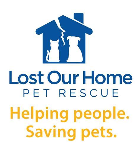 lost our home pet foundation inc nonprofit in tempe az