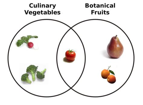 fruit vs vegetable what s the difference between fruits and vegetables