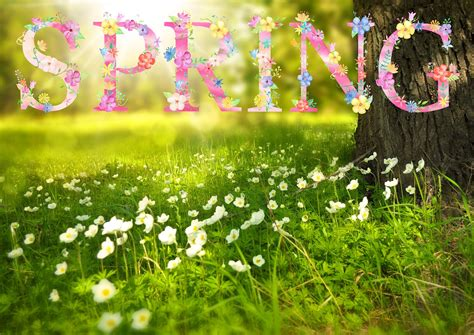 Spring Start by First Day Of Spring Vernal Equinox 2017 The Old Farmer S