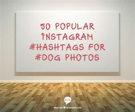 hashtags for dogs pin by burcu caglayan on medya gaga