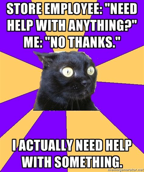 Anxiety Cat Memes - best of the anxiety cat meme 19 pics pleated jeans