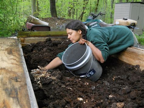 composting for a new generation techniques for the bin and beyond books worm bin design improvements