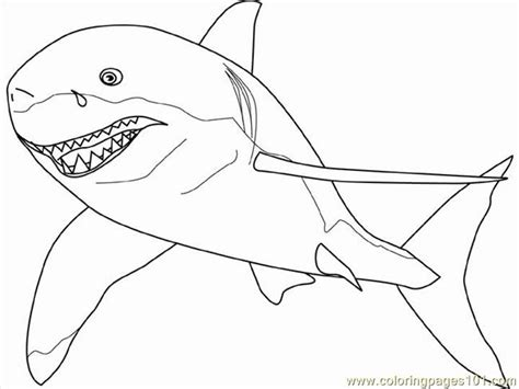 coloring pages great white shark fish gt shark free