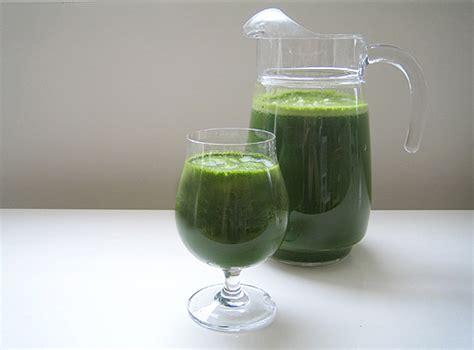 Blender Untuk Jus jerawat jus sehat kita
