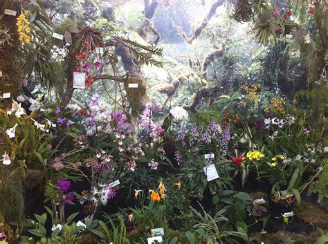 Garten Kiel by Orchideenschau Im Botanischen Garten Kiel Reiselurch De