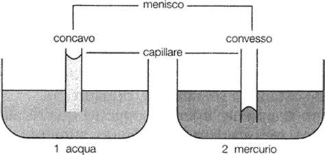 vasi comunicanti spiegazione la capillarit 224 sapere it