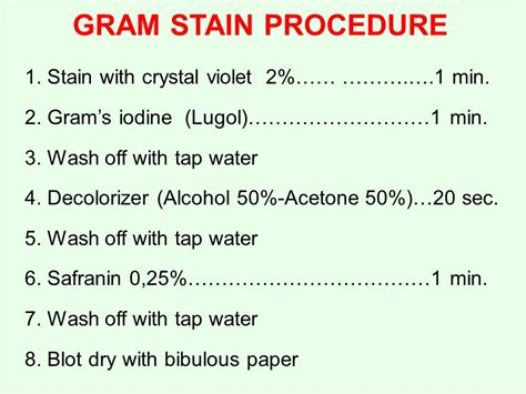 gram staining procedure in flowchart gram staining procedure in flowchart flowchart in word